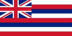 Flag of Hawaii, USA