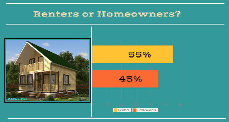borrowers in California USA renters or homeowners